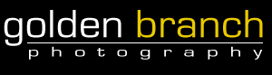 Golden Branch Photography